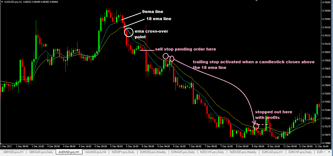 No stop loss in forex